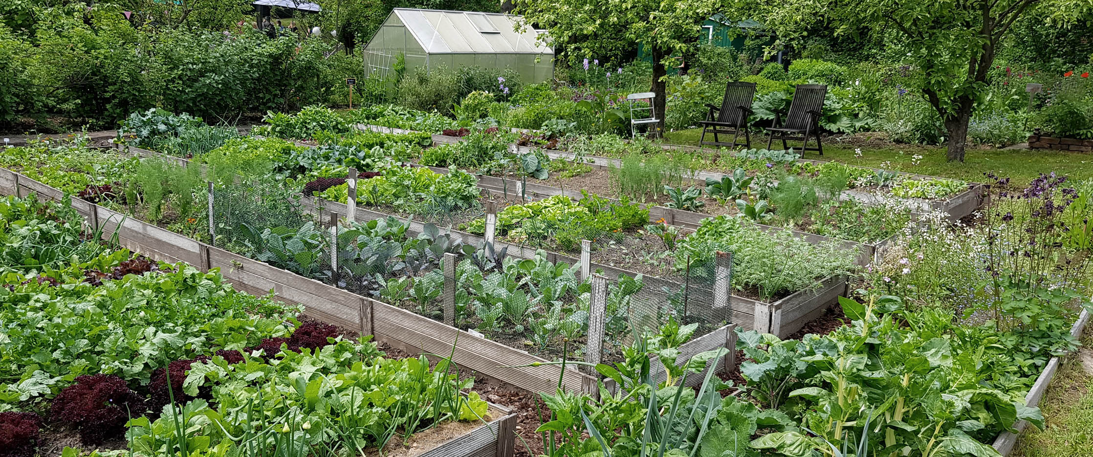 Gartenblog Grüneliebe Instagram